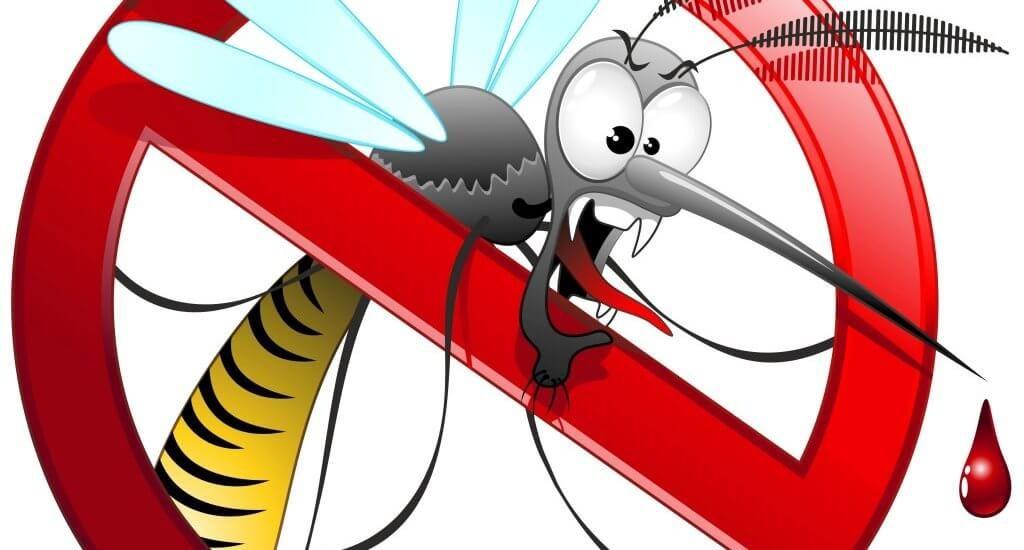 Le zanzare ti danno il tormento?  Togliti il disturbo di torno…